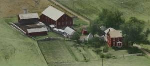 Elmwood Aerial View