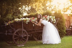 A Wedding at Elmwood